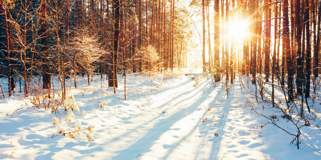 WHY TAKE SUPPLEMENTS IN THE WINTER?